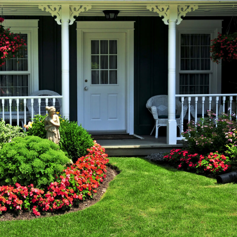 Lawn Care Basics: 5 Tips for a Gorgeous Yard