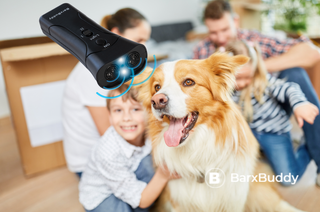 BarxBuddy Is Our Favorite Family-Friendly Dog Training Device