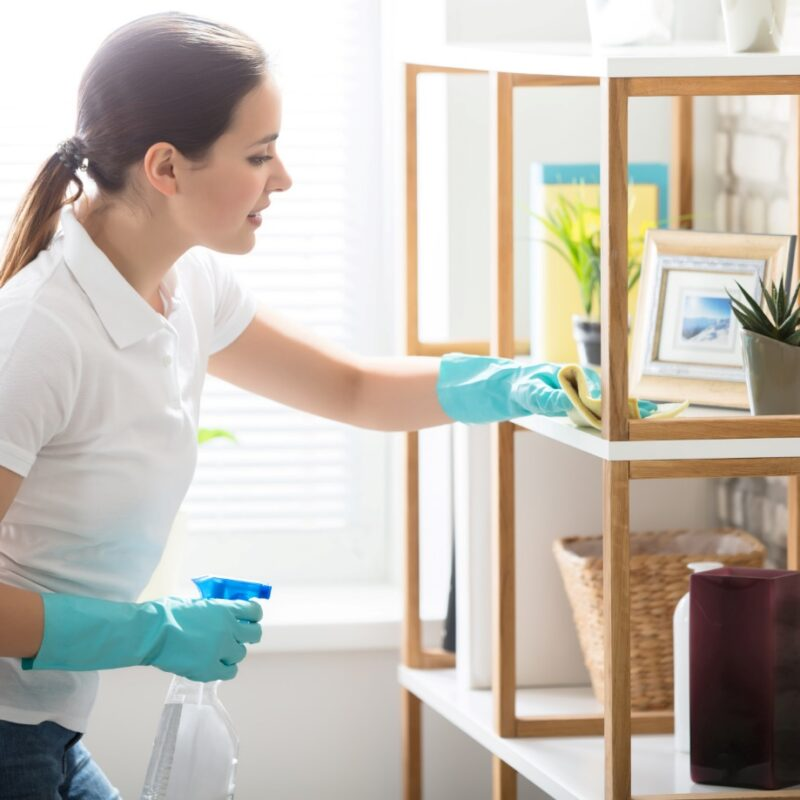 5 Professional Home Cleaning Tips to Keep Your House Spotless and Sanitary