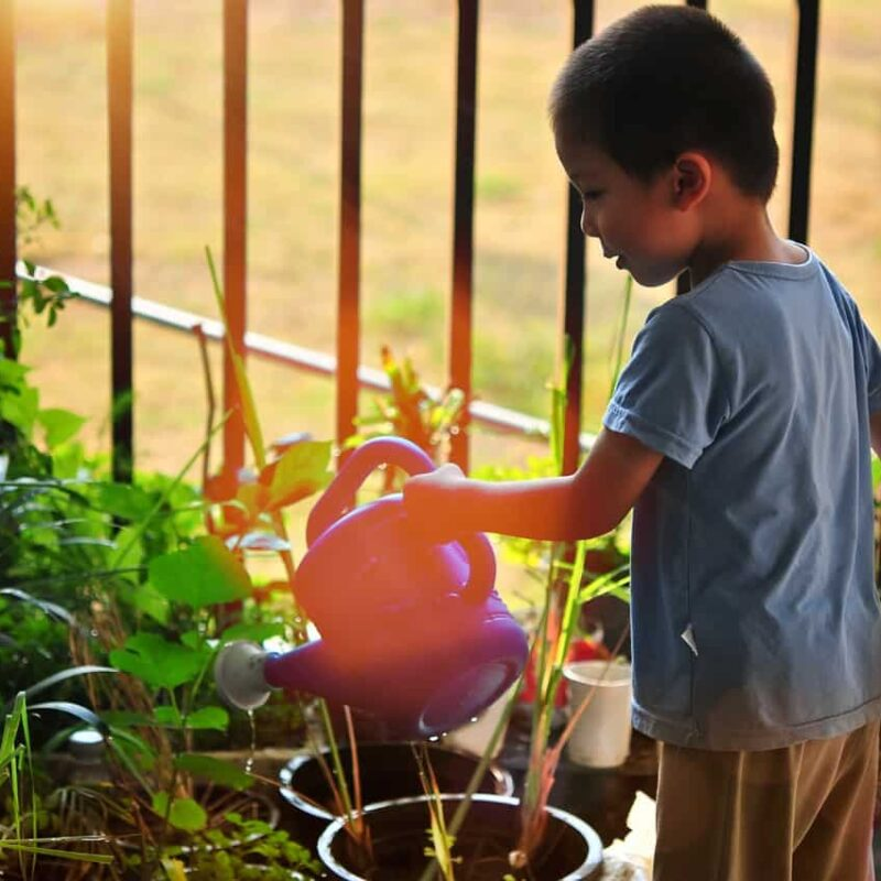 3 Outdoor Chores To Give Your Kids This Summer