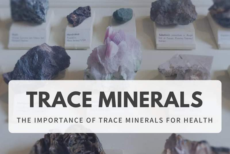 Why Trace Minerals Are Important For Your Health