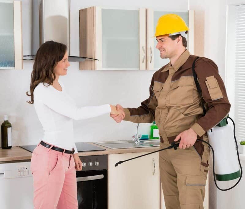 Tips to Save Money on Pest Control